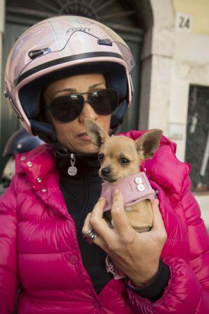 Kvinna Med Hund, Taormina, Italien