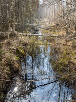 Laggarsjön Urdikningsdiket 20200413
